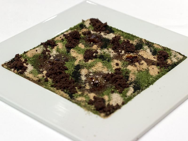 camouflage, Osteria Francescana, Chef Massimo Bottura, Modena