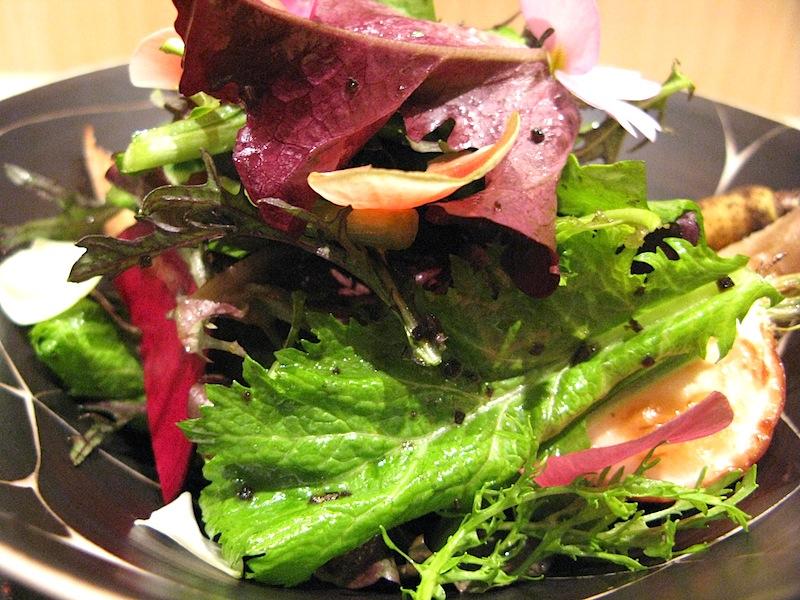 insalata di verdure, Jimbocho Den, Chef Zaiyu Hasegawa, Chiyoda-ku, Tokyo