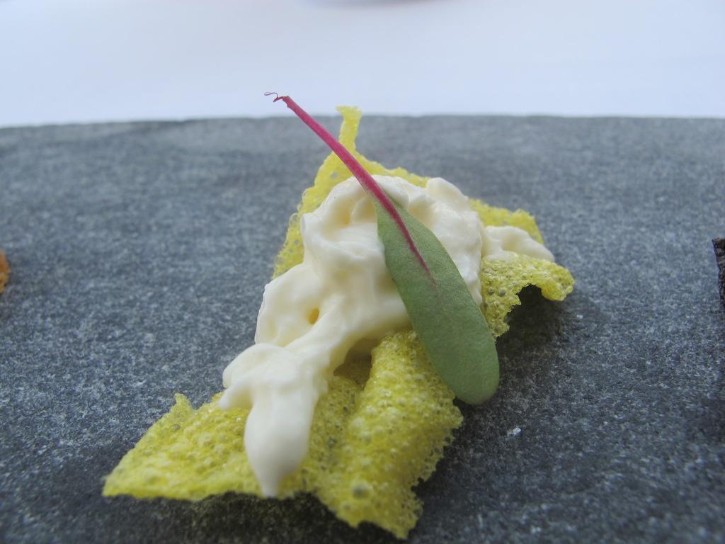 burrata e cialda allo zafferano, La Magnolia, Chef Cristoforo Trapani, Forte dei Marmi