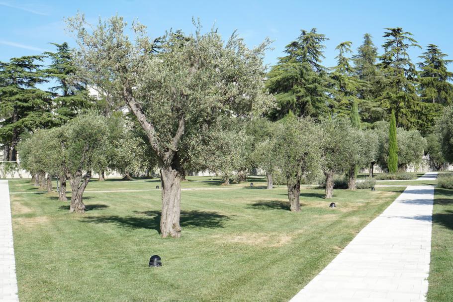 oliveto, JW Marriott Venezia, Isola delle Rose, Venezia