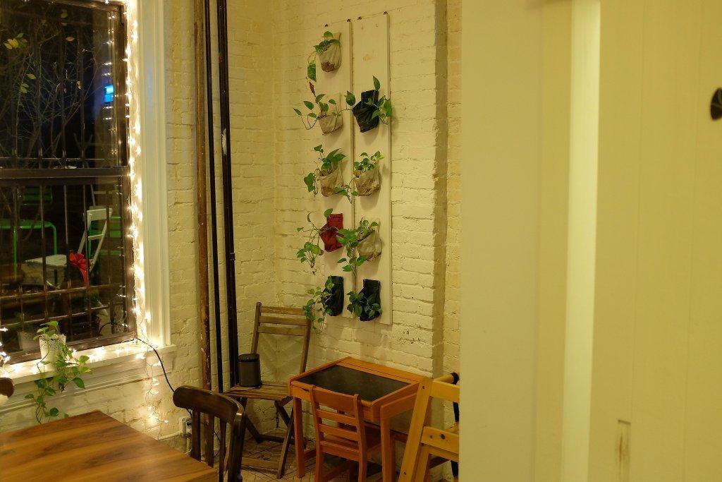 Albero dei Gelati, Brooklyn, New York