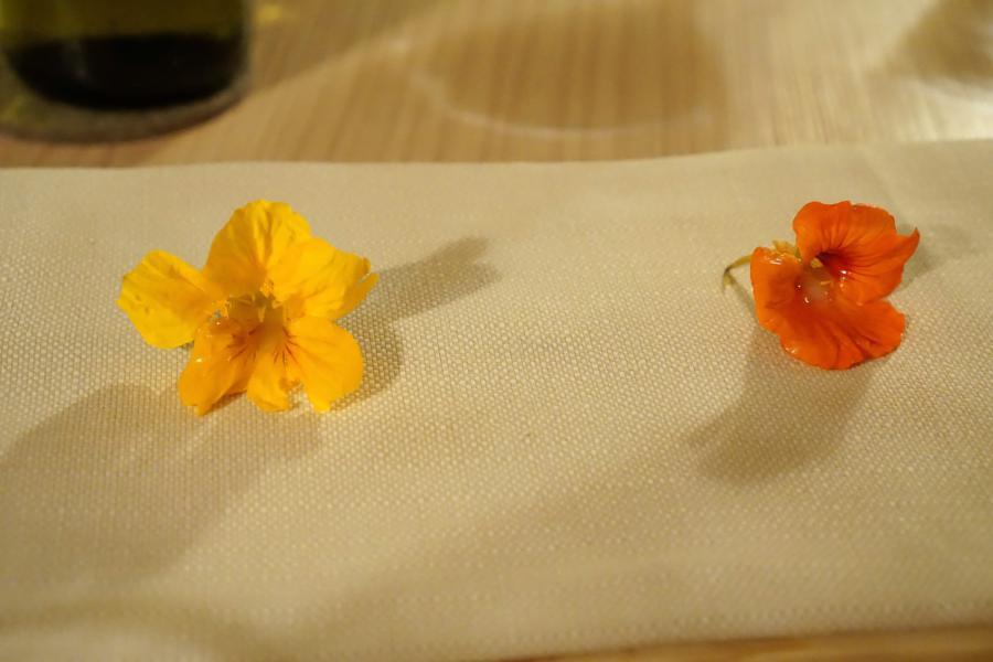 fiore, Aga - Seconda parte, Chef Oliver Piras e Alessandra Del Favero, San Vito di Cadore