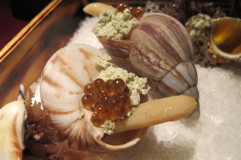 lumaca di mare, 41° Experience, Chef Albert Adrià, Barcellona, spagna