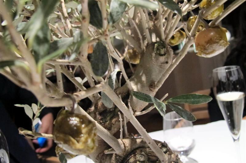 bonsai, El Celler de Can Roca, Chef Joan Roca, Girona