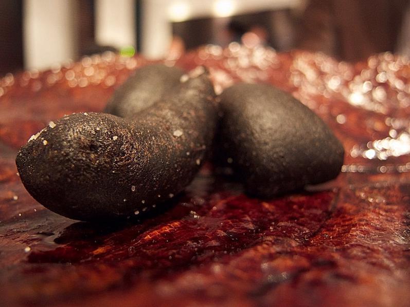 sumi, cipolle grigliate, Les Créations de Narisawa, Yoshihiro Narisawa, Tokyo