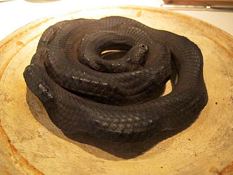 serpente di mare, Les Créations de Narisawa, Yoshihiro Narisawa, Tokyo