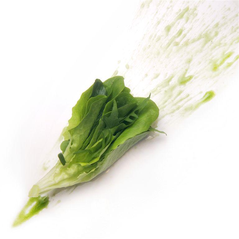 caesar salad, Prima della Prima, Massimo Bottura