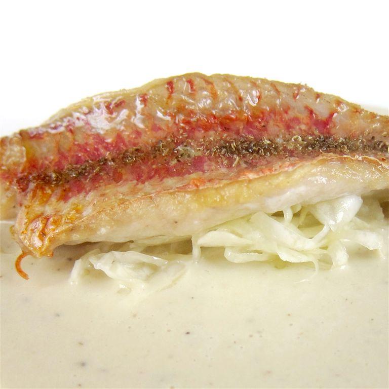 Triglia, su julienne di cavolo crudo e crema di ostriche a base di burro bianco, Alessandro Panichi