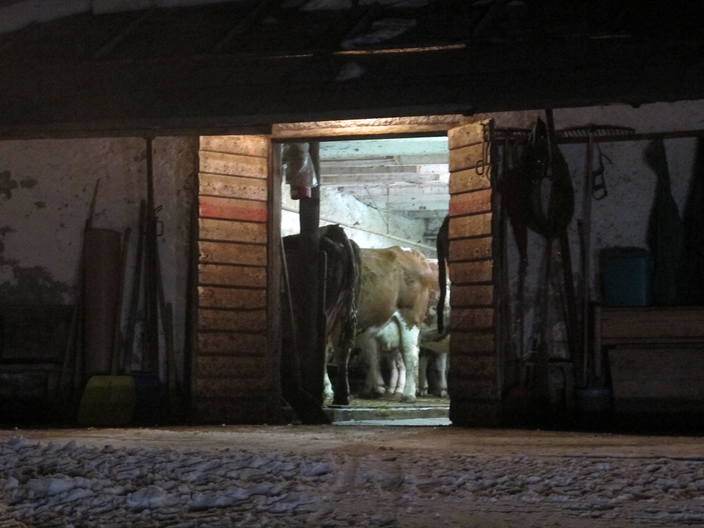 stalla, El Brite de Larieto, Chef Riccardo Gaspari, Cortina d'Ampezzo