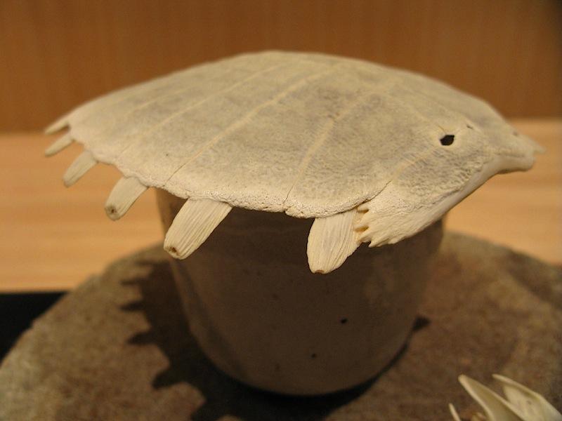 brodo di tartaruga, Jimbocho Den, Chef Zaiyu Hasegawa, Chiyoda-ku, Tokyo