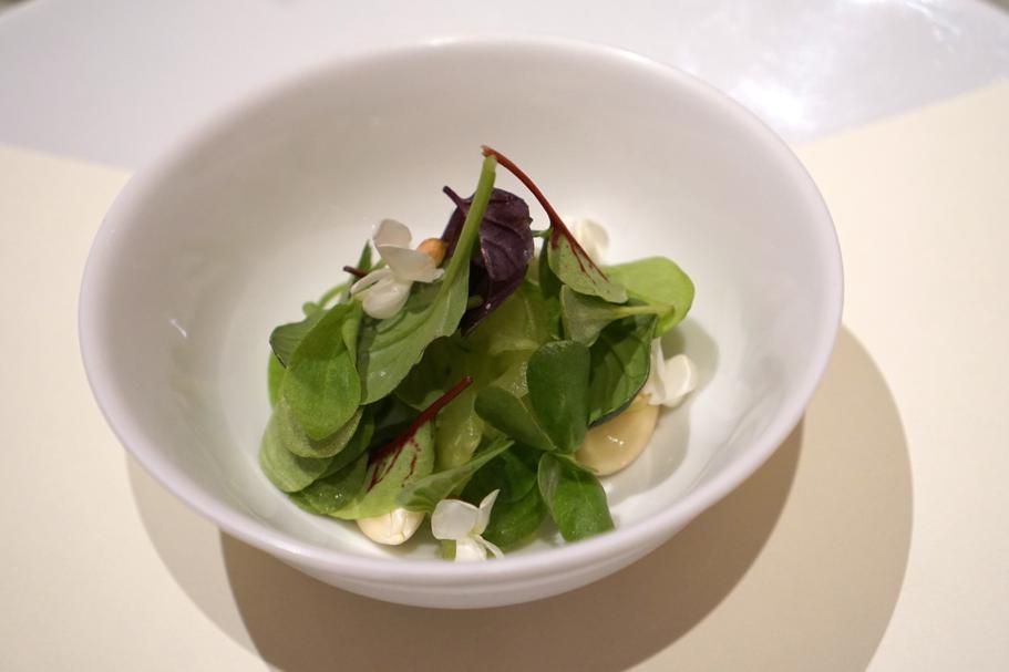 Latte vegetale, Piazza Duomo, Chef Enrico Crippa, Alba