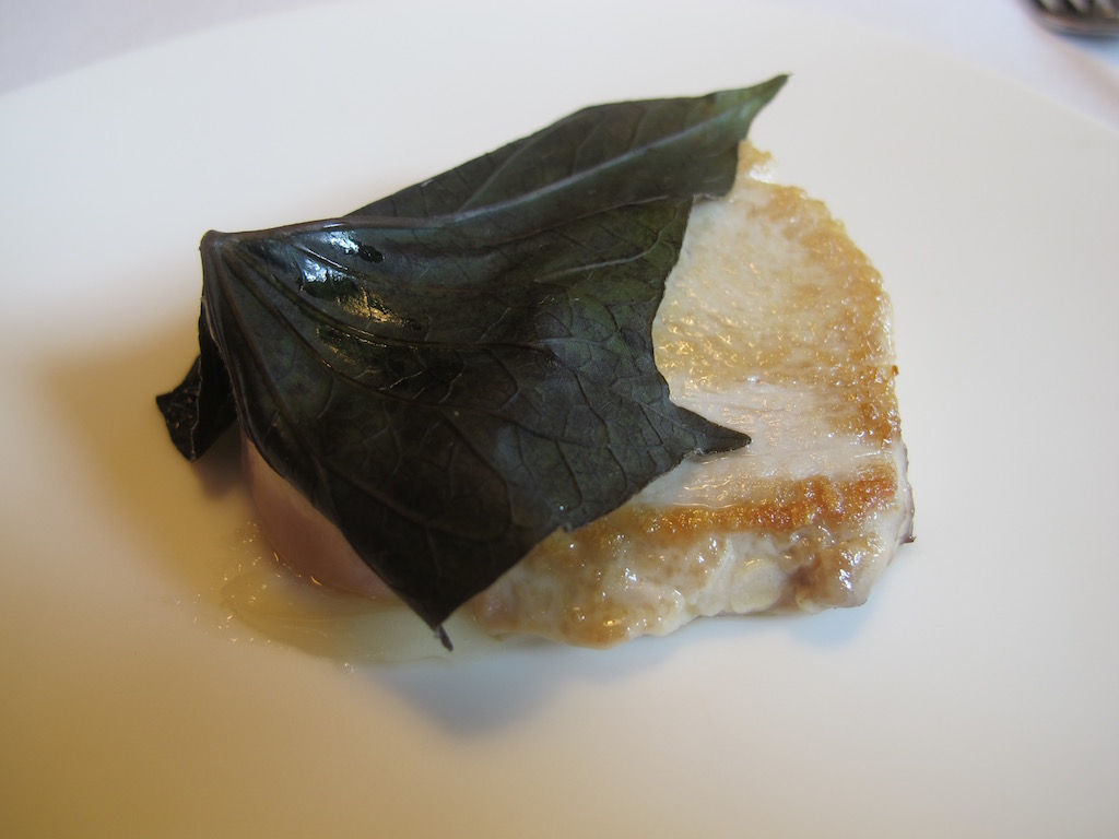 ventresca, Mugaritz, Chef Andoni Luis Aduriz, Errenteria Gipuzkoa, Spagna