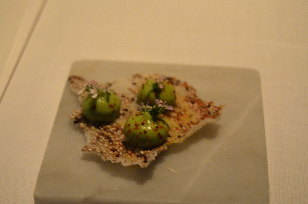 chia tostada, Pujol, Città del Messico, Chef Enrique Olvera