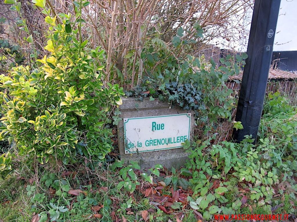 La Grenouillere: Dintorni 2